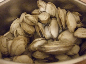 Ipswich clams in the raw